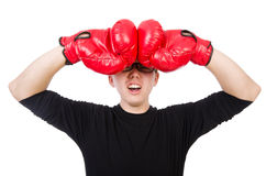 Funny boxer Stock Photography