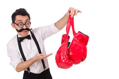 Funny boxer isolated Stock Photos