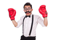 Funny boxer isolated on the white background Royalty Free Stock Image