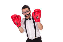 Funny boxer isolated on the white background Royalty Free Stock Photography