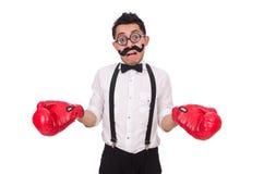 Funny boxer isolated on  white background Royalty Free Stock Photo