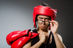 Funny boxer with red gloves against Stock Image