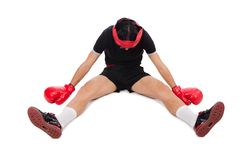 Funny boxer Stock Photo