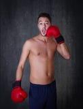 Funny boxing portrait Stock Image