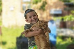Funny boy hugging a cat with lots of love. Portrait of child holding on hands a big cat. playing with a cat royalty free stock images