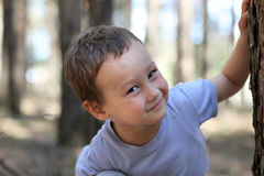 Funny boy 3-4 old at tree in the forest Royalty Free Stock Photography