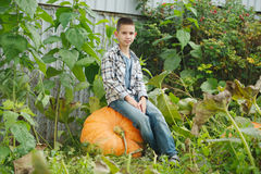 Funny boy with pumpkins in the garden Royalty Free Stock Image
