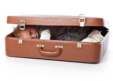 A funny boy in a suitcase Royalty Free Stock Photo