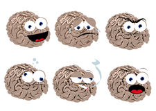 Funny Brain Royalty Free Stock Images