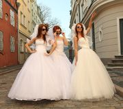 Funny brides Stock Images