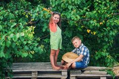 Funny brother and sister at the tree with ripe apricots . Funny brother and sister at the tree with apricots .  Children in the orchard. Walks in the fresh air royalty free stock photography
