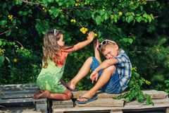 Funny brother and sister at the tree with ripe apricots . Funny brother and sister at the tree with apricots .  Children in the orchard. Walks in the fresh air royalty free stock photo