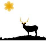 Funny brown Christmas moose smile Stock Photography