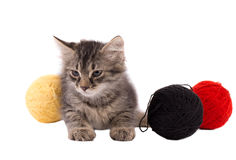 Funny brown kitten and balls of thread Stock Photo