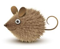 Funny brown mouse. Funny mouse, brown and hairy, vector illustration Royalty Free Stock Photos