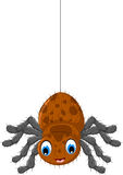 Funny brown spider cartoon posing. Illustration of funny brown spider cartoon posing Royalty Free Stock Images