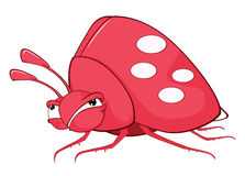 Funny Bug Cartoon Character Royalty Free Stock Photos
