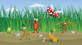 Funny Bugs in the Grass. (vector graphics Royalty Free Stock Photos