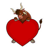 Funny bull with a heart Stock Images