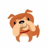 Funny bulldog Royalty Free Stock Photo