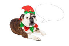 Funny Bulldog Elf Speech Bubble Stock Photos