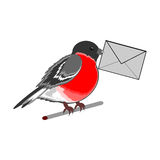 A funny bullfinch with a letter in his beak Stock Photos