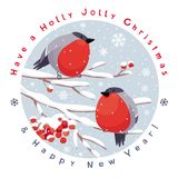 Vector bullfinches and rowan Christmas card royalty free illustration