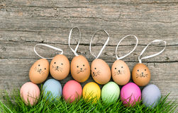 Funny bunnies and colored easter eggs. Holidays decoration Stock Photos