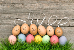 Funny bunnies easter eggs green grass. Pastel colored decoration Royalty Free Stock Photo