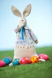 Funny bunny Royalty Free Stock Photo