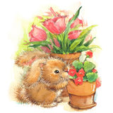 Funny bunny and flowers illustration. watercolor drawing. Royalty Free Stock Image