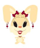 funny girl rabbit  Stock Photography