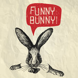 Funny Bunny! - Happy Easter card Royalty Free Stock Images