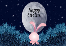 Funny bunny in the night Royalty Free Stock Images