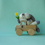 Funny bunny sittig pleasant on the toy wooden car. Stock Image