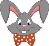 Funny bunny Royalty Free Stock Photo