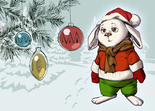 Funny bunny wearing warm winter clothes Stock Photos