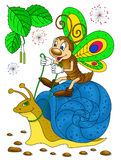 Funny butterfly riding on a snail Stock Image