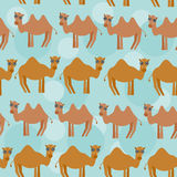 Funny camel Seamless pattern with cute animal on a blue backgrou Stock Photos