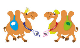 Funny camel. Camel funny smiling desert cartoon stock illustration