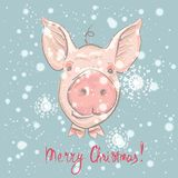 Funny card design with cartoon pigs face. Merry Christmas. Vector illustration stock illustration