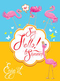 Funny Card with pink flamingos on light blue Stock Photography