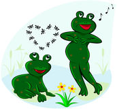 Funny and carefree frogs. The figure shows a frog living in a pond Stock Image