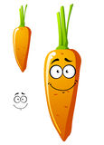Funny carrot vegetable Royalty Free Stock Image