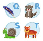 Funny cartoon alphabet. Quil, Raccoon, Snail, Tiger Stock Photos