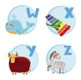 Funny cartoon alphabet. Whale, Xylophone, Yak, Zebra Stock Images