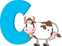 Funny Cartoon Alphabet-C With Cow Royalty Free Stock Image