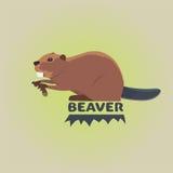 Funny cartoon beaver illustration, cartoon style Royalty Free Stock Photos