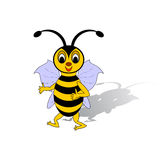 A funny cartoon bee isolated on a white background Stock Images