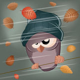 Funny cartoon bird in stormy weather Stock Photos